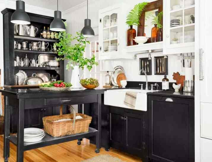 Black and White for Contrast Kitchen Cabinet