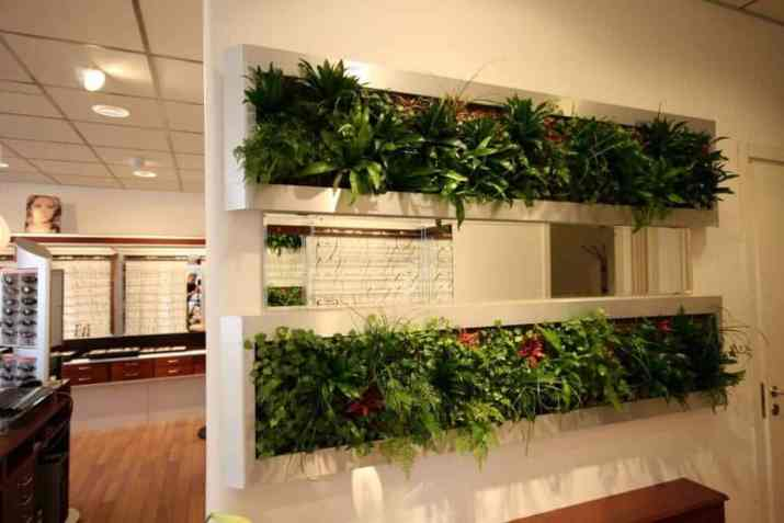 Concrete with Plants as Room Divider