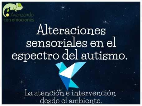Image of Alteraciones sensoriales en el espectro del autismo