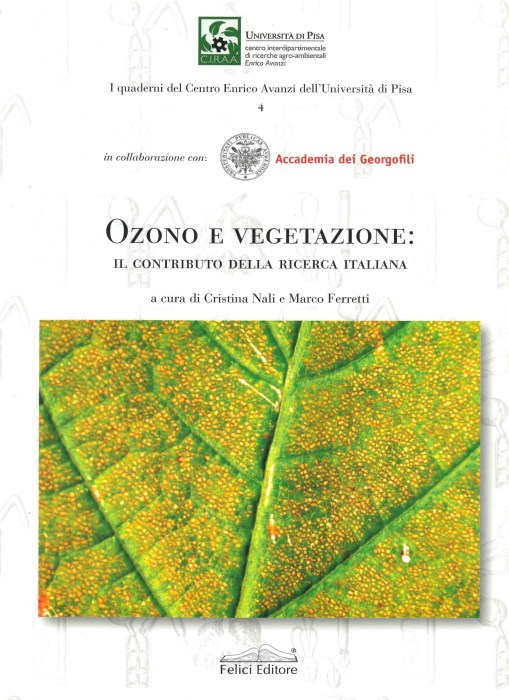 Book Cover: 4