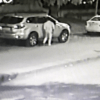 powai-thief-broken-car-windows-and-stolen-cash-and-valuables