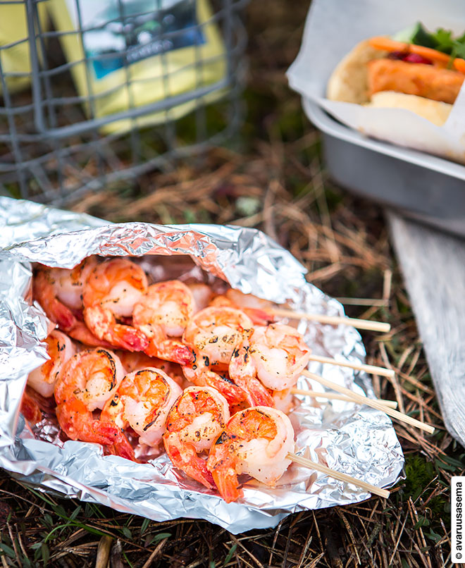 Vappu piknik - grillatut tiikeriravut, © avaruusasema.com