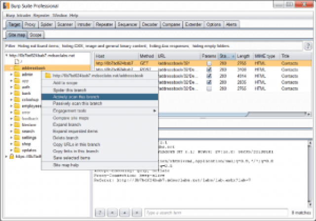Burp Suite PRO Crack Plus License Key Torrent 2019 (Latest Version)