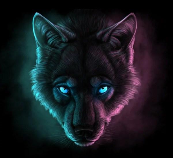 Волк Фото На Аву