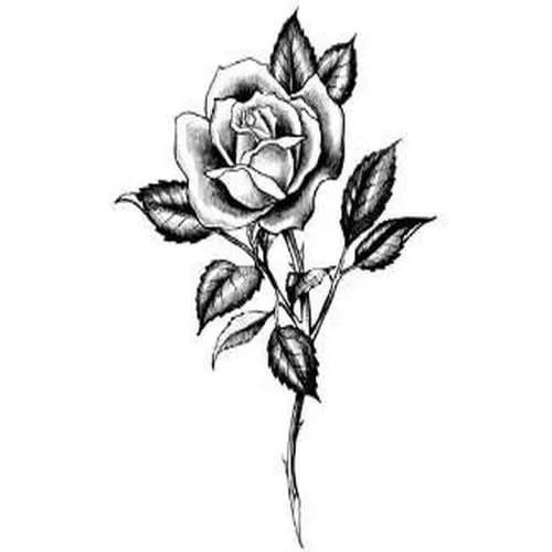 171Чернобелый эскиз тату цветок187 карточка пользователя