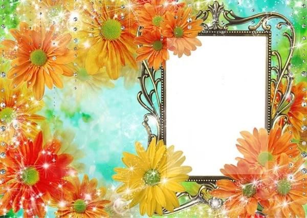 «Рамки цветы вставить фото онлайн бесплатно» — карточка ...