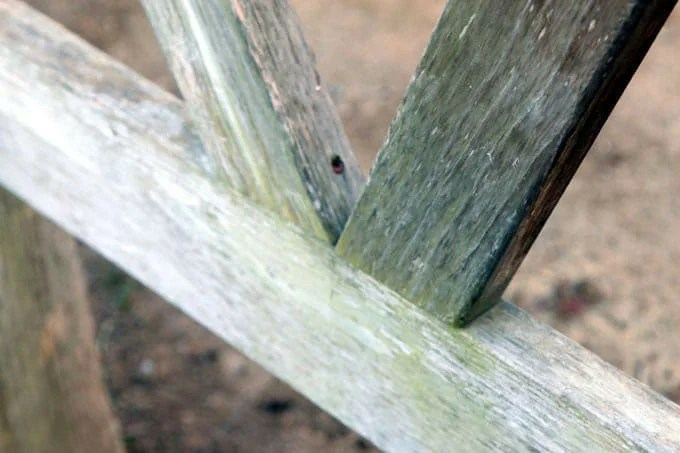 14. Fastening of oblique pergola elements using self-tapping screws and countersunk holes
