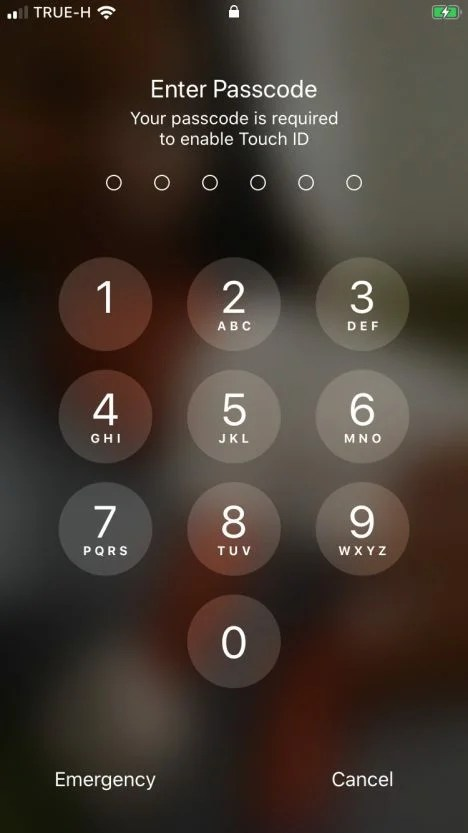 How to reset the counter of incorrect attempts on the iPhone