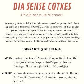 DIA SENSE COTXES | UN DIA PER VIURE AL CARRER!