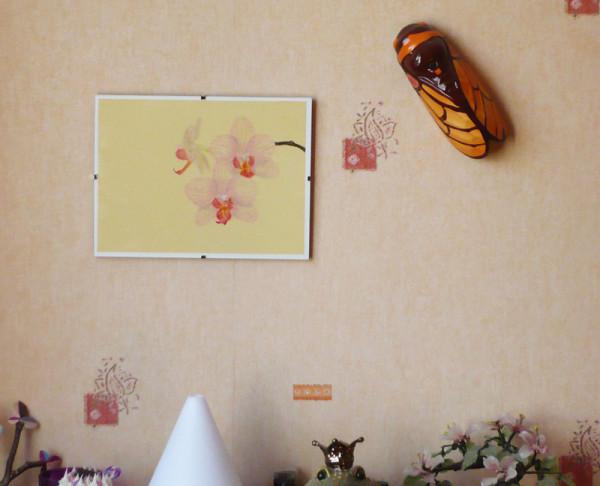 pastel-sec-orchidee.jpg