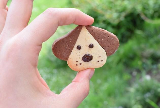 biscuit chien tuto