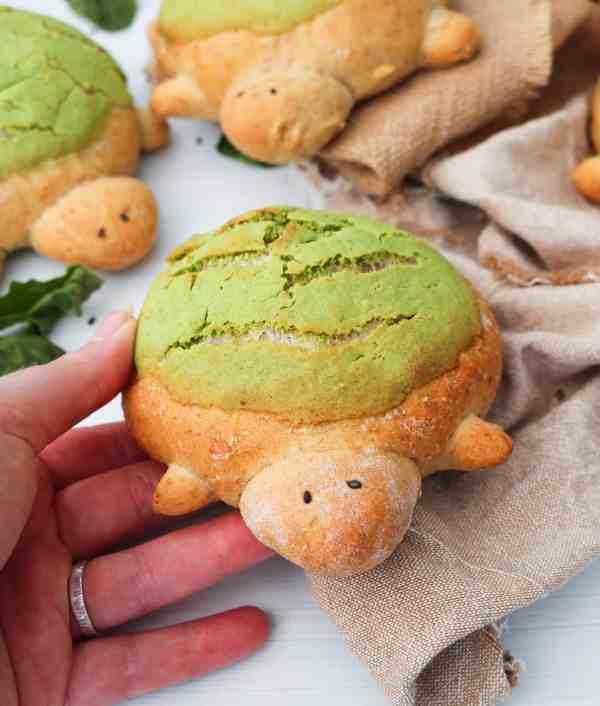Turtle Brioche Bread Buns hand