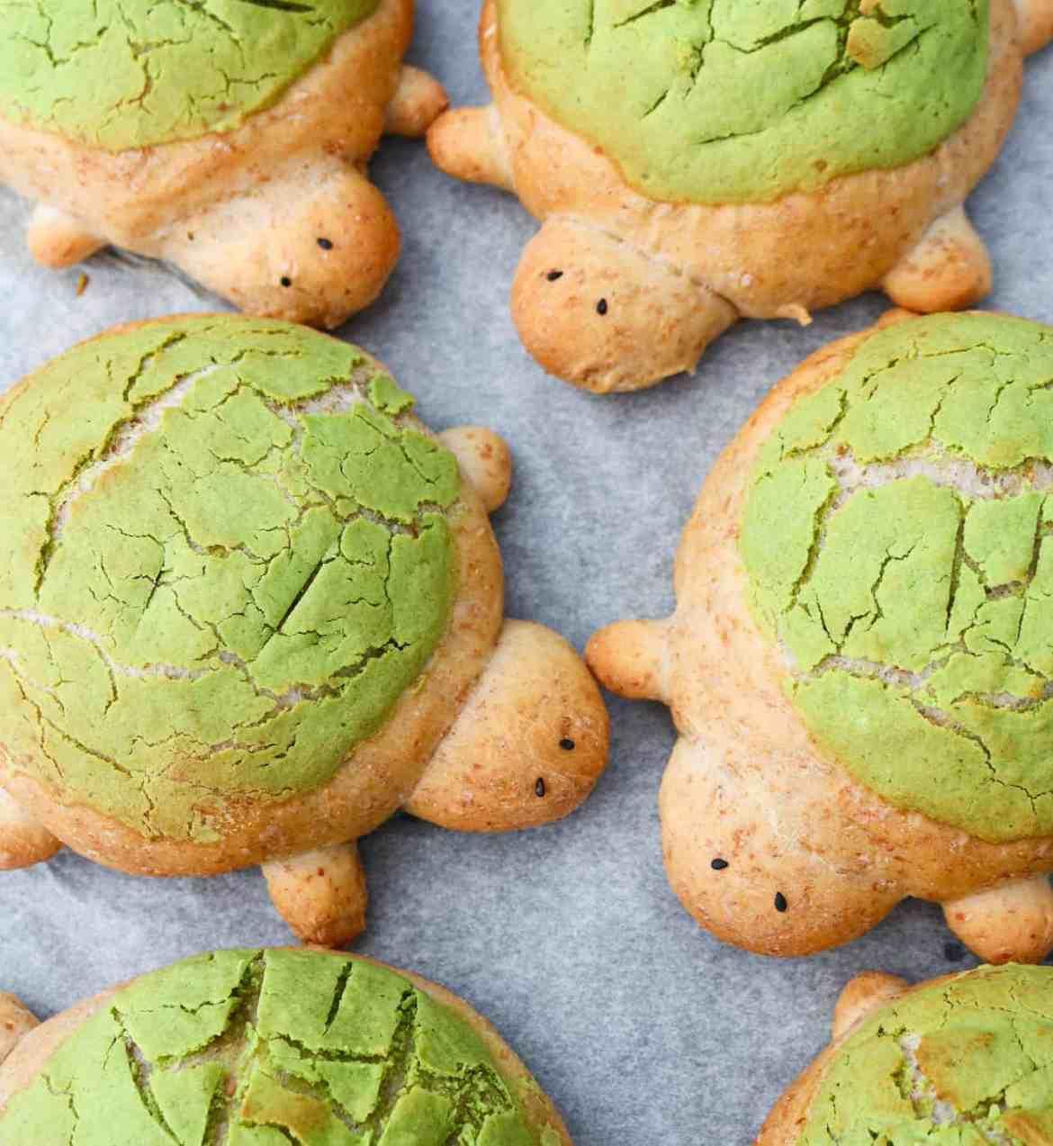 Panini Tartaruga Soffici | Ideali per le feste!