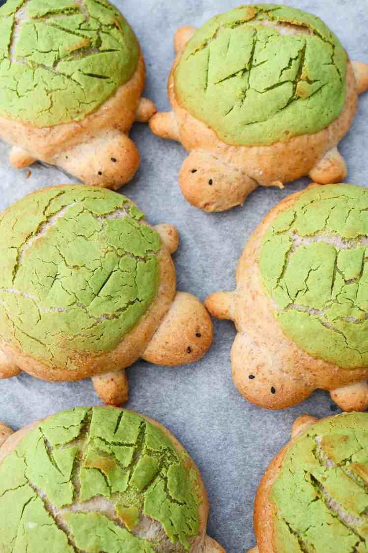 Turtle Brioche Bread Buns baked