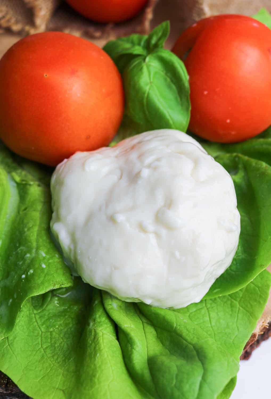 mozzarella close up