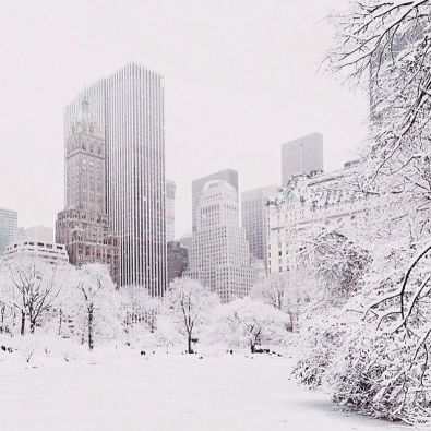 New York Winter 3