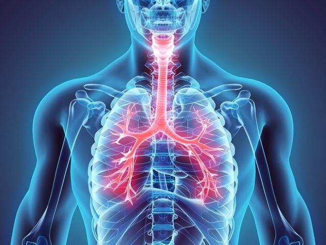 respiratoria.jpg