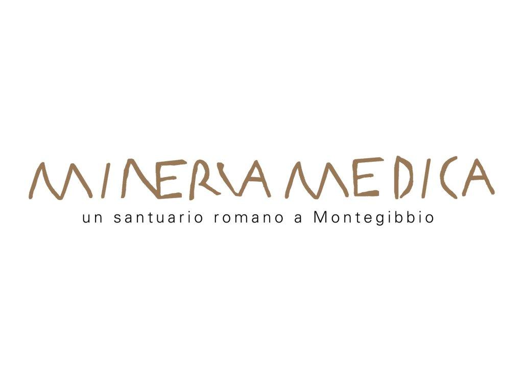2.Minervamedica