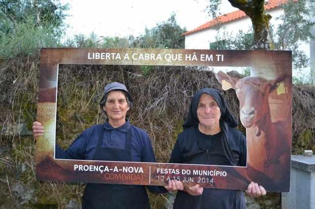 cabra_municipio_proenca_a_nova_festa