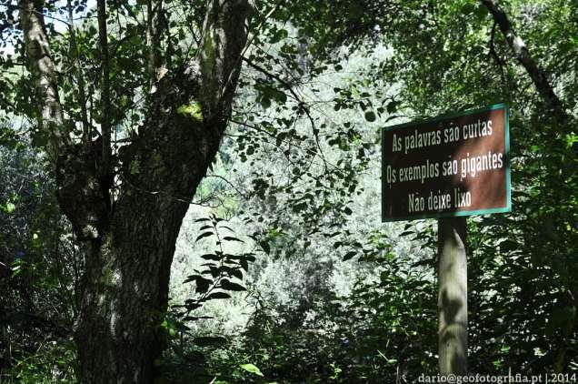 ecovia_rio_lima_ponte_de_lima_ponte_da_barca_04