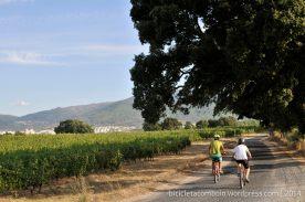 bicicleta_comboio_cicloturismo_022