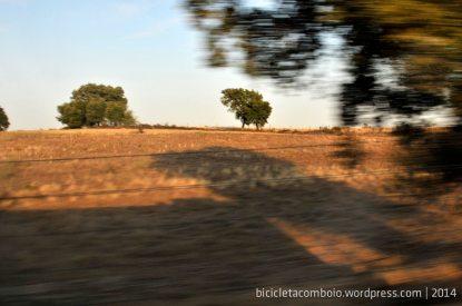 bicicleta_comboio_cicloturismo_026