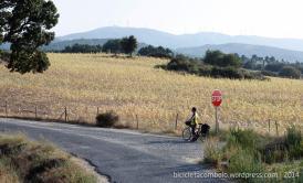 bicicleta_comboio_cicloturismo_038