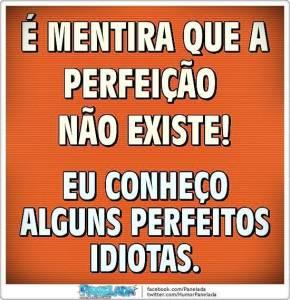 Conheço-alguns-perfeitos-idiotas