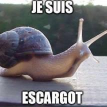 je suis escargot