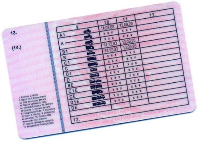 carta_conducao_categoria_d1_passageiros