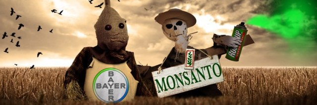 monsanto e bayer
