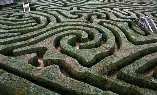 hedge-maze_2124522i