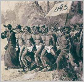 1903- TCH Á DEPUTADA MANUELA PINTO VIEIRA3