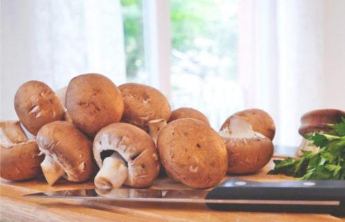 mushroom-817845_500
