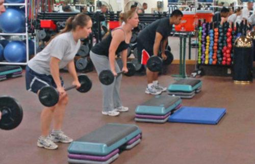 weights-817635_500_332