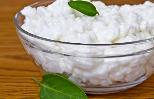 dairy-cottage-cheese_500_332_