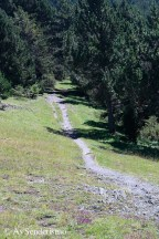 Cami dels Solans-29
