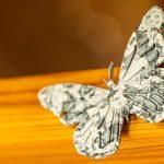 Mariposa Plástico Reciclado
