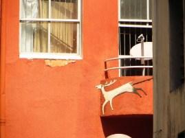 Alley of the deer - Beco do Veado