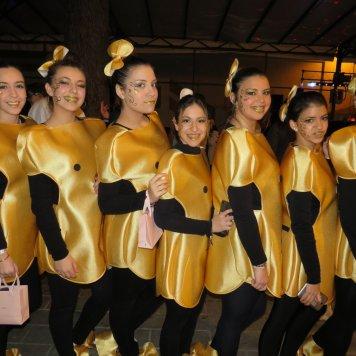 carnaval 2017 (148)