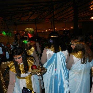 carnaval 2017 (46)