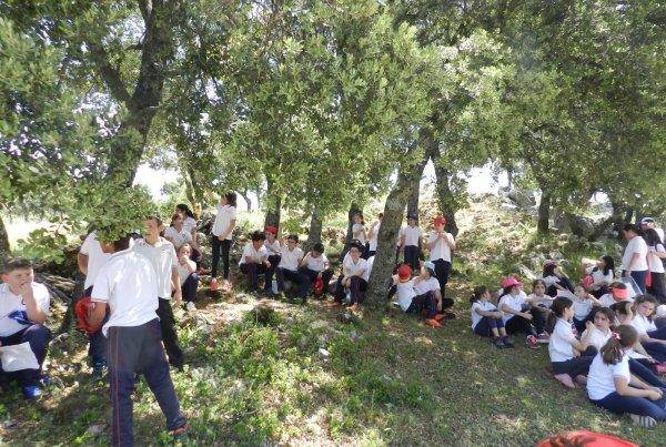 Excursión a Zuheros, Colegio Espiritu Santo