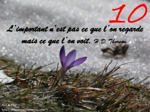 janvier-photocitation10