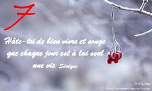 janvier-photocitation7