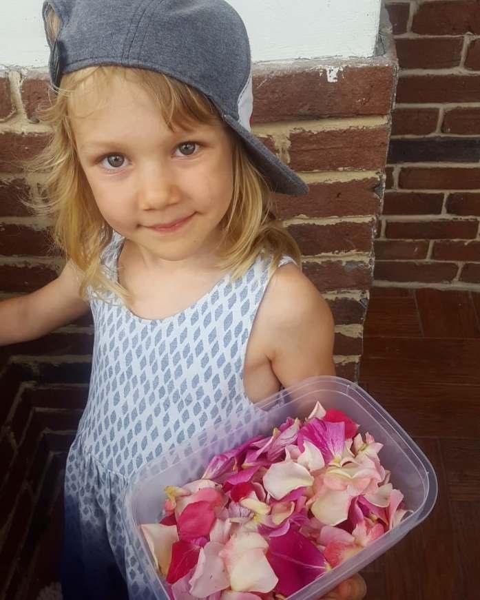 Aventuri in cinci Retete gatite de copii Trandafirata