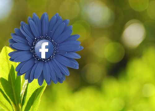 https://i1.wp.com/averagegiantmarketing.com/wp-content/uploads/2014/08/8541370656_c1117630fc_Grow-Social-Media3.jpg?resize=500%2C357