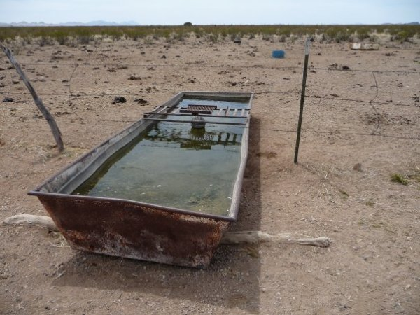 NM Water Trough