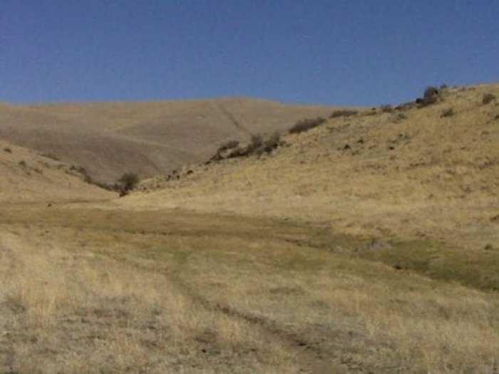 Golden Vistas in New Mexico