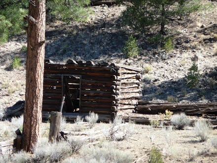 Dilapidated log cabin near Reserve NM