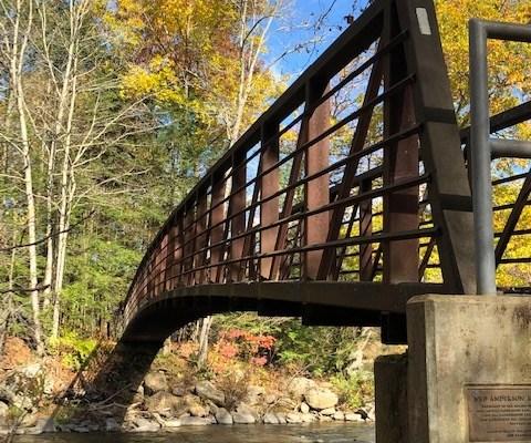 Bridge Near Ten Mile River Campsite